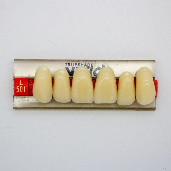 Dientes Acrílicos L501