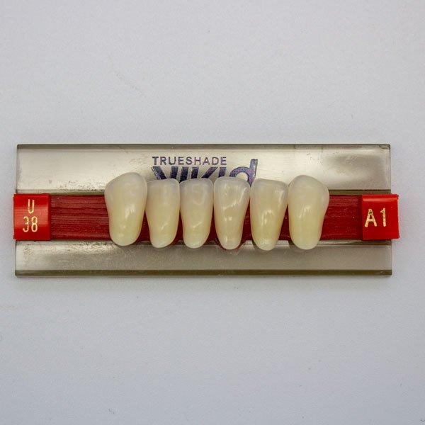 Dientes Acrílicos U38 A1
